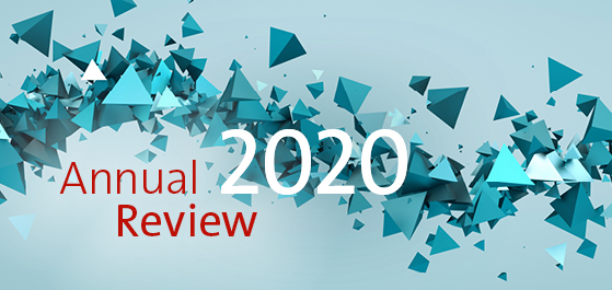 Annual Review 2020